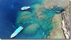 ボートで行く沖縄青の洞窟シュノーケリングツアーサマーリゾート沖縄
