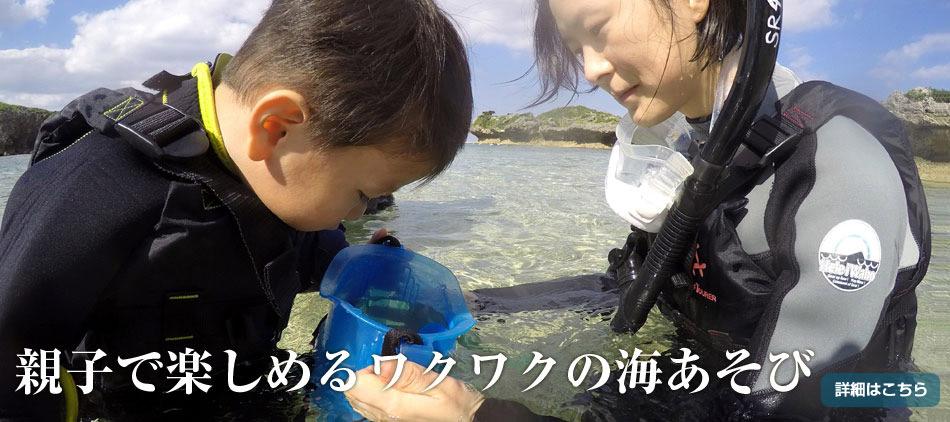 親子で楽しめるワクワクの海あそび